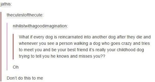 tumblr-gets-deep-dog-reincarnated.jpg